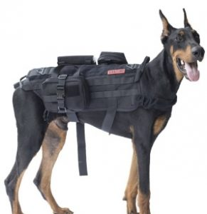 vest to help you carry things